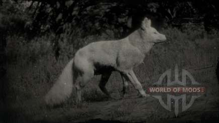 legendary fox