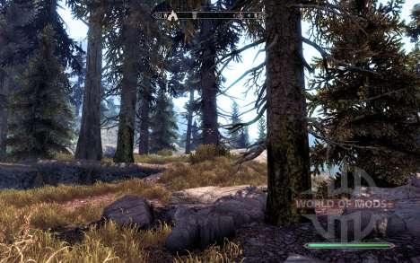 Realistic pine for Skyrim fifth screenshot