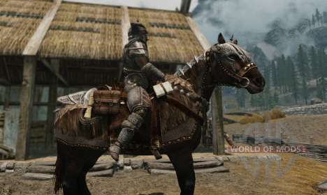 Armor for horses for Skyrim tenth screenshot