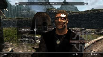 Race terminators for Skyrim