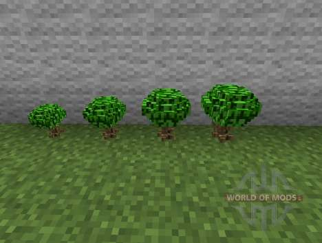 Berry Bush-berry bushes for Minecraft