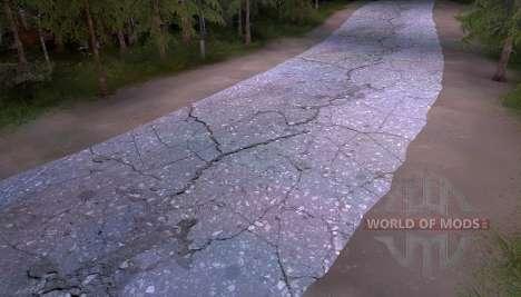 The old asphalt for Spin Tires