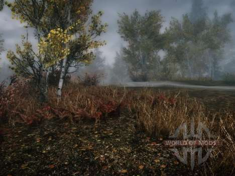 More grass-grass for Skyrim second screenshot