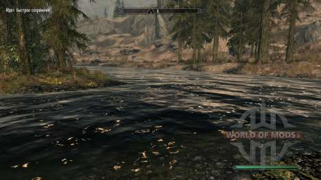Pure waters-mod, which improves water for Skyrim