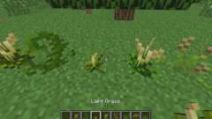 New vegetation for Minecraft