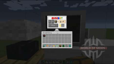 Coins for Minecraft