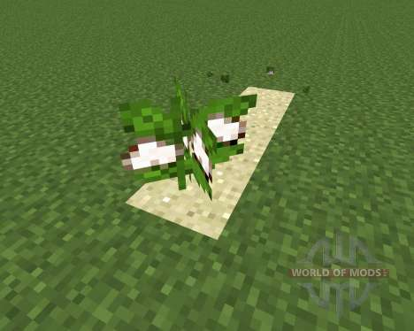 Desert Cotton Mod for Minecraft