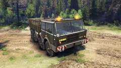 Tatra 813 8x8 KOLOS for Spin Tires