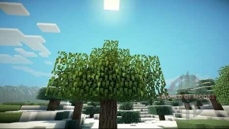 GLSL shaders for Minecraft