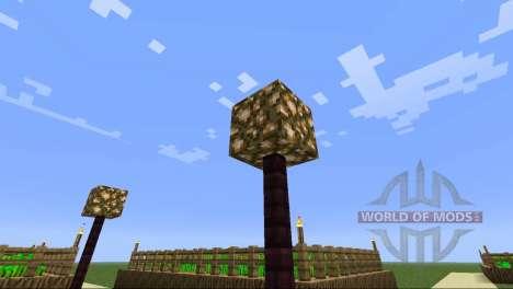 Superior village for Minecraft