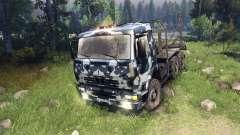 KamAZ-6520 camo v3 for Spin Tires