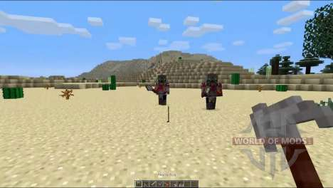 The assassins for Minecraft