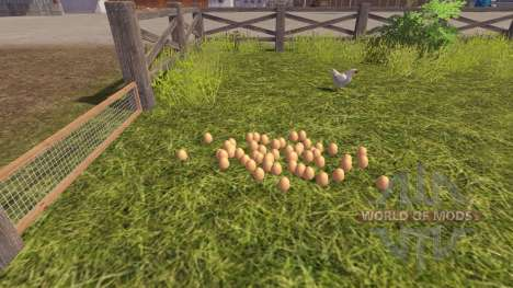 The accuracy of eggs for Farming Simulator 2013