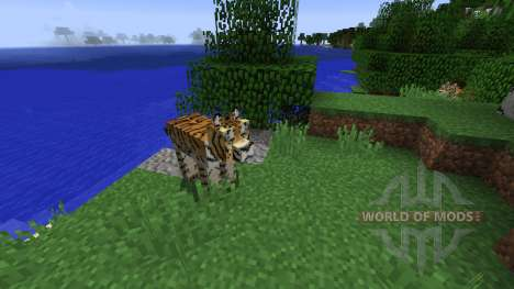 MoCreatures for Minecraft