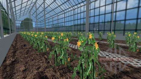 Greenhouses for tomatoes and cucumbers for Farming Simulator 2015