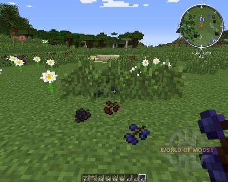 MC BerryBush for Minecraft