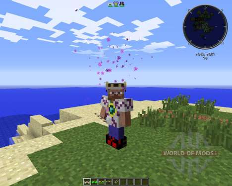 Wear Your Enemies for Minecraft