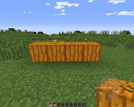Pumpkin Carvier for Minecraft