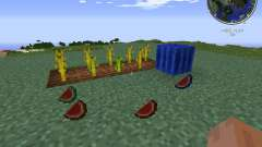Elemental Melons for Minecraft