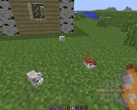 Hamsterrific [1.6.4] for Minecraft
