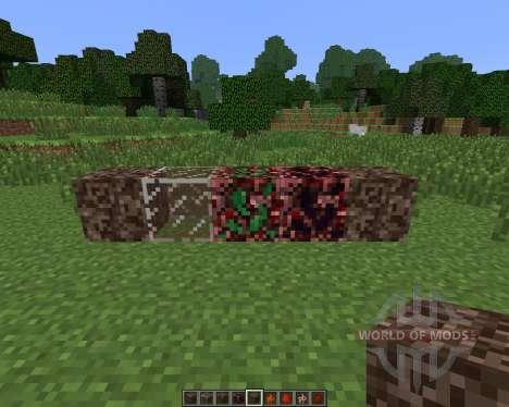 NetherX [1.6.4] for Minecraft