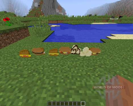 Birds Foods [1.8] for Minecraft