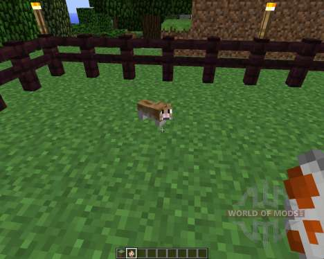 Invincible Hamster [1.5.2] for Minecraft