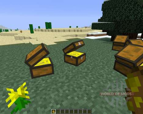 Treasure Chest [1.6.4] for Minecraft