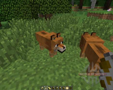 Doge [1.6.4] for Minecraft