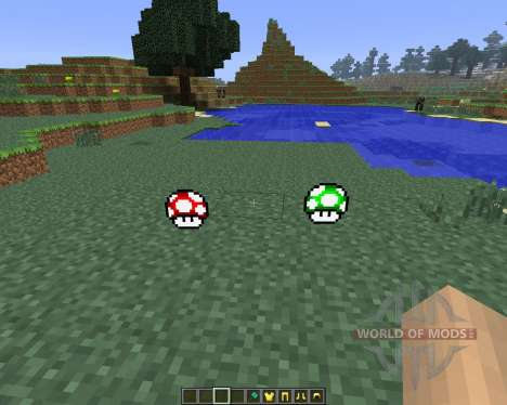Super Mario [1.6.4] for Minecraft