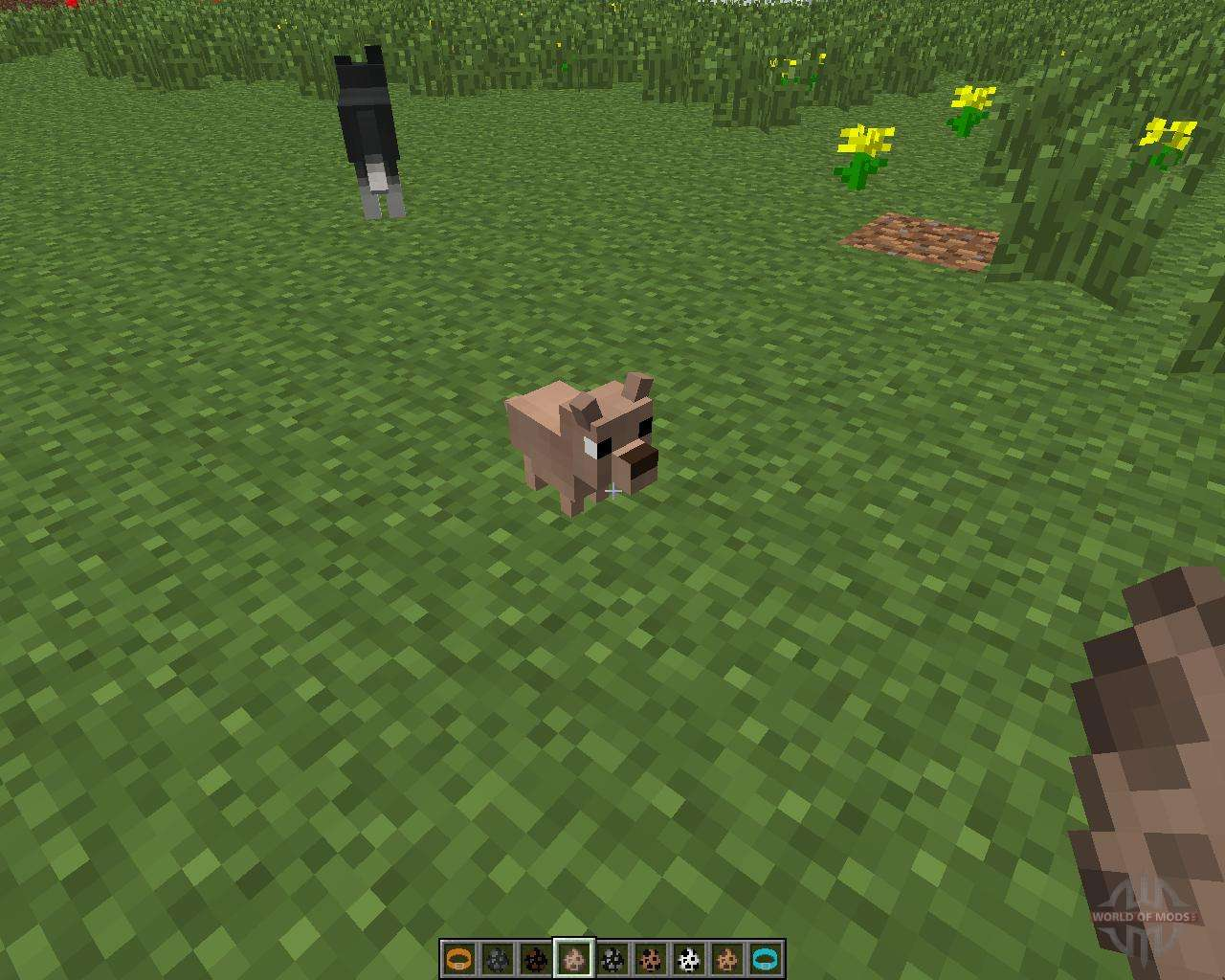 Coupious Dogs Mod