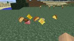 Mexican [1.6.4] for Minecraft