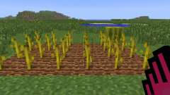 Planter Helper [1.6.4] for Minecraft