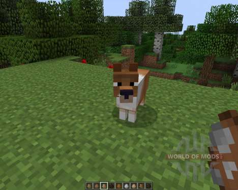 Copious Dogs by wolfpup [1.7.2] for Minecraft
