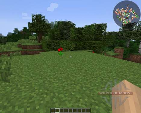 RadarBro [1.7.2] for Minecraft