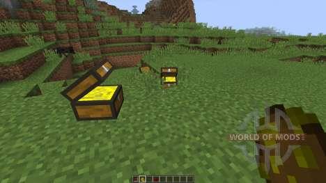 Treasure Chest [1.8] for Minecraft