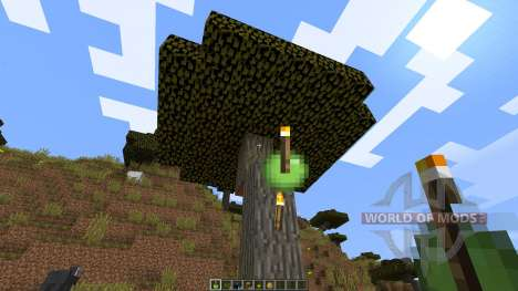 Throwable Torch [1.8] for Minecraft