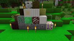 Shacked Pack 2.0 [16x][1.8.8]