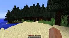 Wonderful map for Minecraft