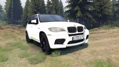 BMW X5 M for Spin Tires