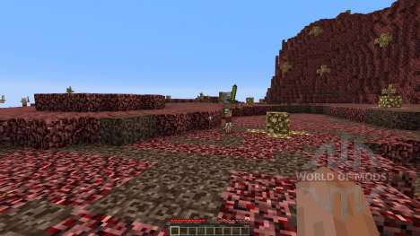 The new nether for Minecraft