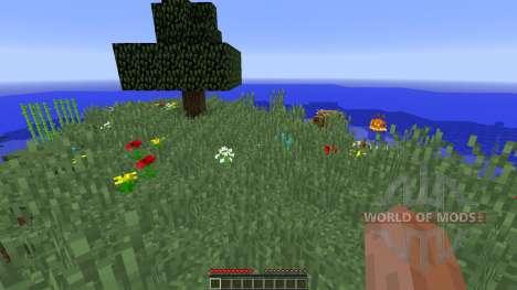 Survival Map Lone Survivor for Minecraft