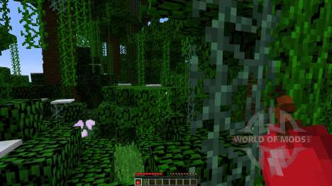 Custom Map for Minecraft