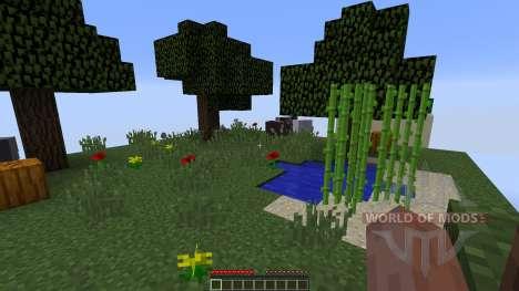 Chunks for Minecraft