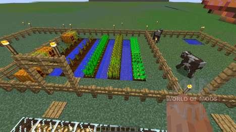 Charlotte Demons pepper farm for Minecraft