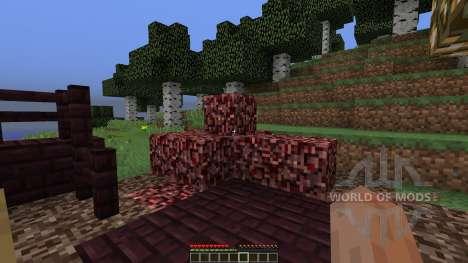 NetherLast for Minecraft