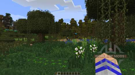 Life in the Woods: Renaissance for Minecraft