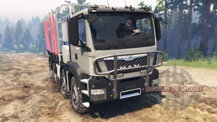 MAN TGS 41.480 [03.03.16] for Spin Tires