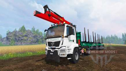 MAN TGS 41.480 [forest] for Farming Simulator 2015