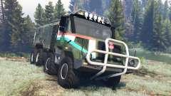 Tatra 163 Jamal 8x8 v4.0 for Spin Tires